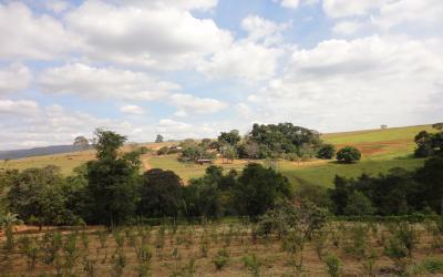 Reserva EcoCerrado Brasil