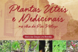 Plantas úteis e medicinais